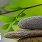 Feng-Shui Harmonie Mensch und Umgebung