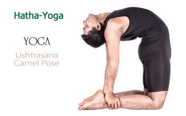 Hatha Yoga - Bild © byheaven - Fotolia.com