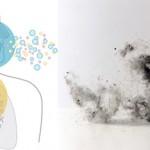 Bei Hausstauballergie atmen wir die Allergene ein
