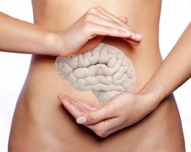 Der Darm steht in enger Beziehung zu unserem Gehirn