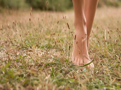 Die Behandlung gribka die Beine von den Volksmitteln
